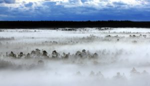 EV 99 Eskilstunas @ Eskilstuna Eesti Kodu | Södermanlands län | Rootsi